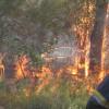 Про вжиття заходів для попередження виникнення пожеж в природних екосистемах міста