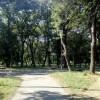 Про проведення громадських обговорень під час розгляду питань щодо присвоєння назв паркам, скверам, бульварам м. Павлоград.