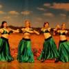 У Павлограді вперше відбувся фестиваль – конкурс східного танцю «СхідФест»