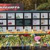 Павлоградці вшанували пам'ять загиблих в АТО