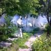 Проведення дезінсекційних заходів у парку ім. 1 Травня
