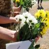 Вшанували пам'ять бійців на братській могилі